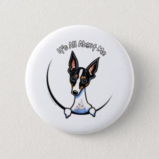 Tricolor Rat Terrier IAAM 6 Cm Round Badge