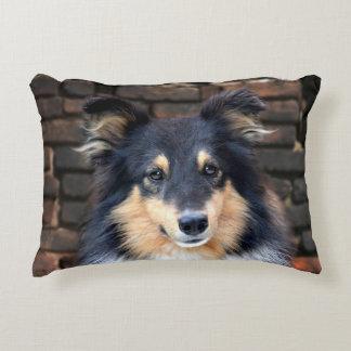 Tricolor Sheltie Decorative Cushion