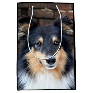 Tricolor Sheltie face Medium Gift Bag