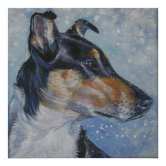 TRICOLOR smooth collie art print