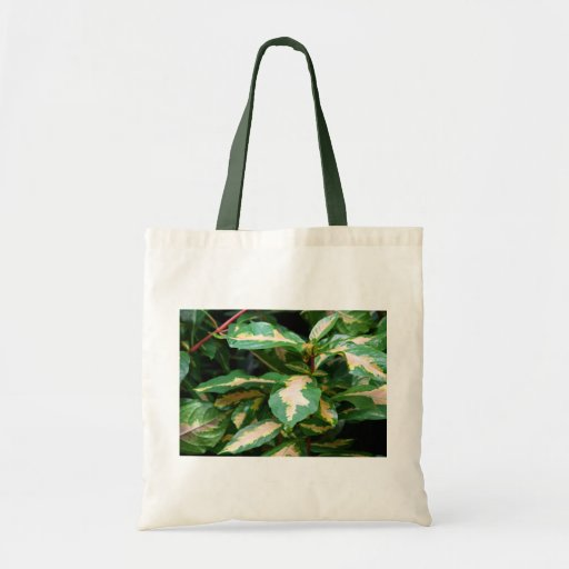Tricolored Caricature Plant Tote Canvas Bags