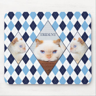 Trident the Cat Argyle Mouse Pad