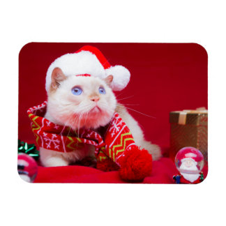 Trident the Cat Christmas Magnet