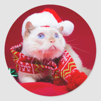 Trident the Cat Mini Round Sticker