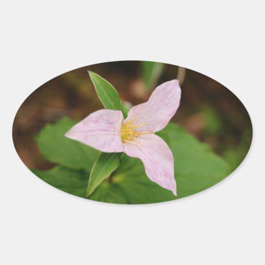 Trillium Flower Oval Sticker