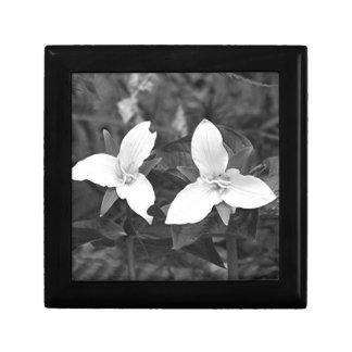 Trilliums Gift Box