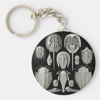 Trilobite! Basic Round Button Key Ring