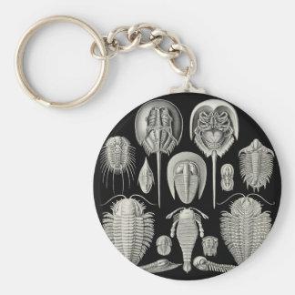 Trilobite! Basic Round Button Key Ring