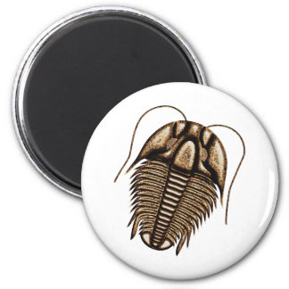 Trilobite Fridge Magnet