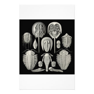 Trilobite Stationery