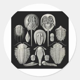 Trilobite! Stickers
