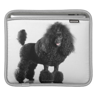 Trimmed black Poodle iPad Sleeve