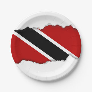Trinidad and Tobago Flag Paper Plate