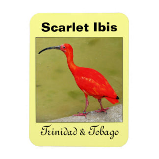 Trinidad and Tobago Red Scarlet Ibis Magnet