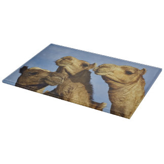 Trio of camels, camel market, Cairo, Egypt Cutting Board