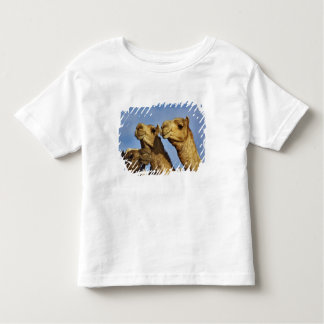 Trio of camels, camel market, Cairo, Egypt Toddler T-Shirt