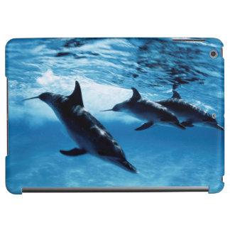 Trio of Dolphins
