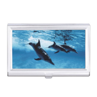 Trio of Dolphins Business Card Holder