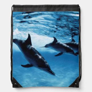 Trio of Dolphins Drawstring Bag