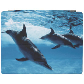 Trio of Dolphins iPad Cover
