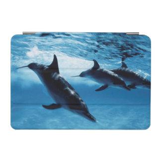 Trio of Dolphins iPad Mini Cover