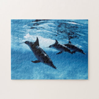 Trio of Dolphins Jigsaw Puzzle