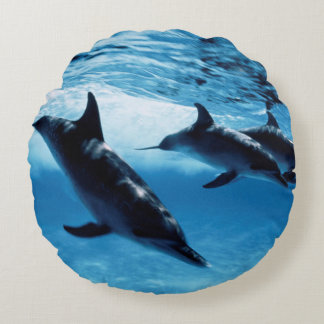 Trio of Dolphins Round Cushion