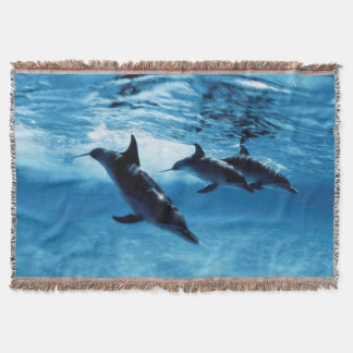 Trio of Dolphins Throw Blanket
