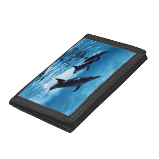 Trio of Dolphins Tri-fold Wallets