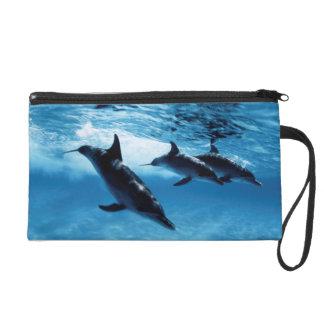Trio of Dolphins Wristlet