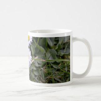Trio of flowers coffee mug