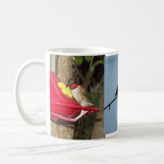 Trio of Hummingbirds Mug