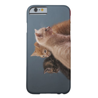 Trio of kittens barely there iPhone 6 case