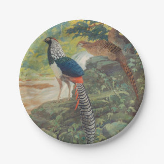 Trio of Lady Amherst's pheasant by waterfall 7 Inch Paper Plate