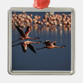 Trio of Lesser Flamingos in flight, Lake Nakuru Christmas Ornament