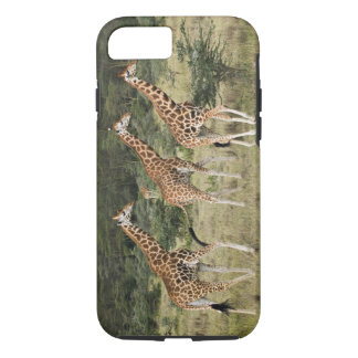 Trio of Rothschild's Giraffes, Lake Nakuru iPhone 8/7 Case