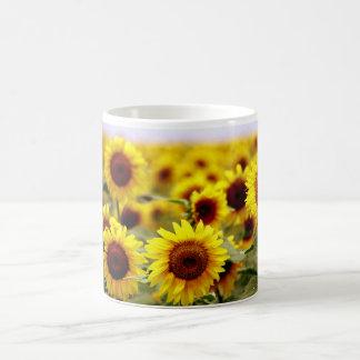 Trio Sunflowers Basic White Mug