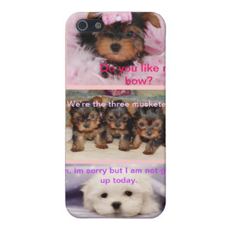 Triple Puppy iPhone5 Case Case For iPhone 5/5S