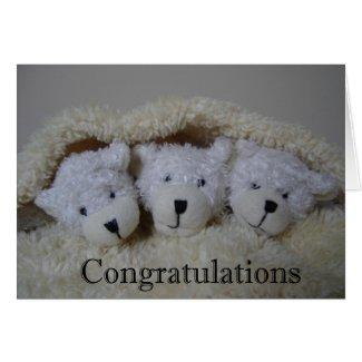triplet bears congratulations card