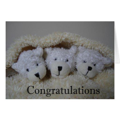 triplet bears congratulations greeting card