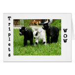 TRIPLETS=WOW=FANTASTIC GREETING CARDS
