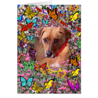 Trista the Rescue Dog in Butterflies Greeting Card
