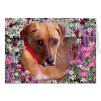 Trista the Rescue Dog in Flowers Greeting Card