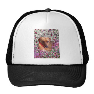 Trista the Rescue Dog in Flowers Hats
