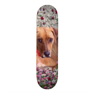 Trista the Rescue Dog in Flowers Skate Boards