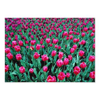 Triumph tulips  flowers 13 cm x 18 cm invitation card