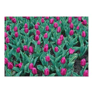 Triumph tulips, hot pink 13 cm x 18 cm invitation card