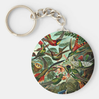 Trochilidae - Hummingbirds Key Ring