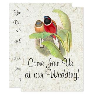 Trogan Bird Wildlife Animals Wedding Invitations