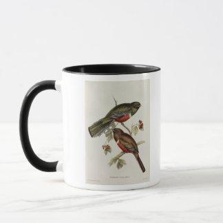 Trogon Collaris Mug